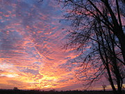 Dawn Harrold - Idaho Sunset 1