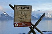 Mile Marker Framed Prints - Iditarod Framed Print by Rick  Monyahan
