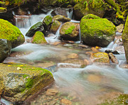 North Fork Prints - Idyllic Creek Print by Jon Mack