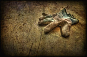 Garbage Photo Prints - If the Glove Doesnt Fit........ Print by Evelina Kremsdorf