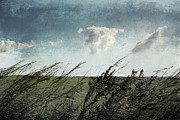 Minimal Landscape Digital Art - If the winds of winter could soothe  by Ellen Cotton