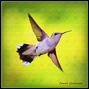 Wishes Prints - If Wishes Had Wings Print by Carol Groenen