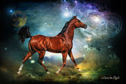 Best Wishes Posters - If Wishes Were Horses Poster by Karen Slagle