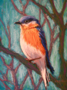 Bluebird Pastels Framed Prints - If You Leave I Will Follow Bluebird Framed Print by Christine Kane