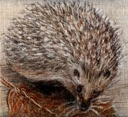 Chalk Drawing Metal Prints - Igel im Herbst   Hedgehog in autumn Metal Print by Birgit Schlegel