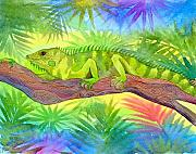 Rain Painting Framed Prints - Iguana Framed Print by Jennifer Baird