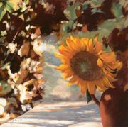 Sunflower Framed Prints - Il Girasole Framed Print by Guido Borelli