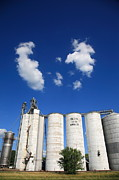Americana - Illinois Grain Silos by Frank Romeo