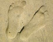 Foot Prints Posters - Illusionary Feet Poster by Gwyn Newcombe