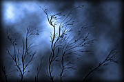 Bare Trees Prints - Illustration Of A Severe Storm Print by Vlad Gerasimov