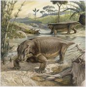 Marshes Prints - Illustration Of Lystrosaurus Print by John Sibbick