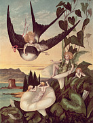 Fairy Painting Posters - Illustration to Thumbkinetta Poster by Eleanor Vere Boyle and Hans Christian Andersen