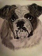 Dogs Drawings - Im Happy Really by Diane Leuzzi