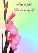 Gladiola Posters - Im so glad You are in my life Poster by Kristin Elmquist