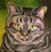 Oil Portrait Drawings - Im Your Man Tabby by Susan A Becker