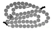 Ted Kinsman - Imitation Pearl Necklace