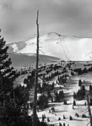 Snowy Art - Imperial Bowl and Peak 8 at Breckenridge Resort Colorado by Brendan Reals