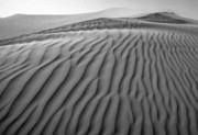 Sand Dunes Metal Prints - Imperial Dunes no.3 Metal Print by Hans Mauli