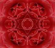 Imperial Red Rose Mandala Print by Zeana Romanovna