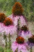 Deborah Benoit - Impressionistic Cones