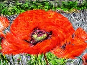 Blooming Digital Art Prints - Impressionistic  Poppy Print by Barbara Griffin