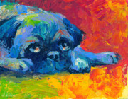 Dog Portrait Artist Drawings - impressionistic Pug painting by Svetlana Novikova