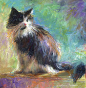 Buying Online Drawings Prints - Impressionistic Tuxedo Cat portrait Print by Svetlana Novikova