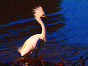 Impressionism Digital Art Metal Prints - Impressions of a Snowy Egret . Painterly Metal Print by Wingsdomain Art and Photography