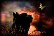 Black Feline Framed Prints - In a cats eye all things belong to cats.  Framed Print by Bob Orsillo