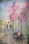 Blossoming Tree Prints - In a Small Town Print by Laurie Search