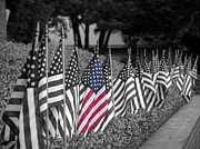 4th July Digital Art Posters - In Black and White and Color Poster by Shannon Story