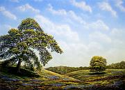 Oak Trees Paintings - In Bloom by Frank Wilson
