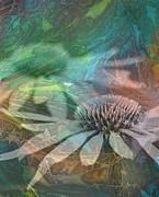 In Dreams Print by Judy Arbuckle