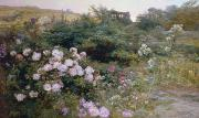 Pink Roses Prints - In Full Bloom  Print by Henry Arthur Bonnefoy