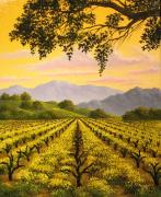 Napa Valley Vineyard Paintings - In Full Bloom by Patrick ORourke