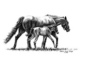 Horseracing Prints - In Harmony Print by Thomas Allen Pauly