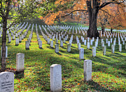 Arlington Photos - In Memory  by JC Findley