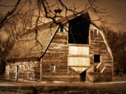 Barn Photos - In Need by Julie Hamilton