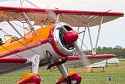 Bi Plane Prints - In Plane View Print by Betsy A Cutler East Coast Barrier Islands
