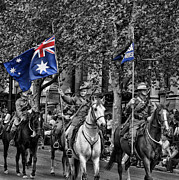 Anzac Prints - In Remembrance Print by Douglas Barnard