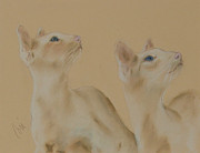 Tabby Pastels Originals - In Sync by Cori Solomon