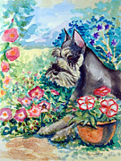 Miniature Schnauzer Paintings - In the Garden - Schnauzer by Lyn Cook