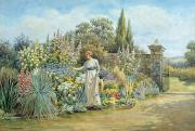 Woman In Water Painting Framed Prints - In the Garden Framed Print by William Ashburner