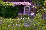 Shed Posters - In the Iris Garden Poster by Susan Isakson