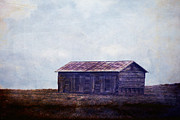 On The Plains Prints - In the middle of nowhere Print by Toni Hopper