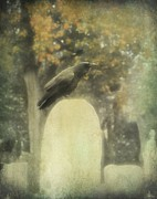 Corvidae Framed Prints - In The Mist Of Fall Framed Print by Gothicolors With Crows