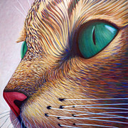 Cats Painting Posters - In The Moment Poster by Brian  Commerford