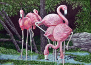 Flamingos Drawings - In The Pink by Beverly Fuqua