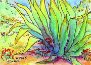 Cactus Prints - In The Shadows Print by Nancy Matus