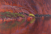 Colorado River Paintings - In the Spotlight by Cody DeLong